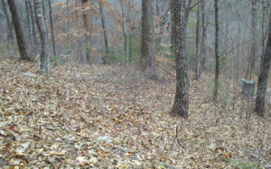 1 acre wooded lot with view of Brasstown Bald.